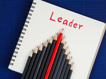 The leader 14 Stock Image