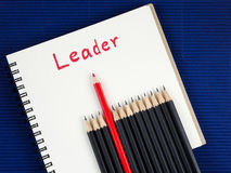 The leader 20 Royalty Free Stock Photo