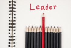 The leader 11 Royalty Free Stock Photography