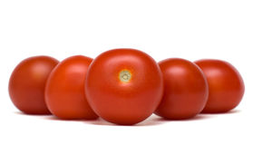 Leader of tomatoes Royalty Free Stock Photo