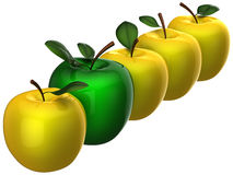 Leadership concept. Fresh delicious apples Royalty Free Stock Image