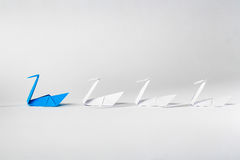 Leadership concept. Leadership concept with origami paper bird leading among white Stock Photos