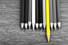 Leadership concept pencil Royalty Free Stock Photo