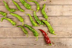 Leadership concept - red hot chili pepper leading the group of green ones Stock Image