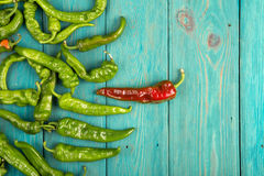 Leadership concept - red hot chili pepper leading the group of green ones Stock Photography