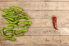 Leadership concept - red hot chili pepper leading the group of green ones Stock Images