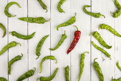 Leadership concept - red hot chili pepper leading the group of green ones. Leadership concept - red hot chili pepper leading the group of green peppers royalty free stock images
