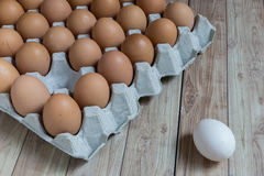 Leadership Concept : White egg is outstanding from the group of Stock Images