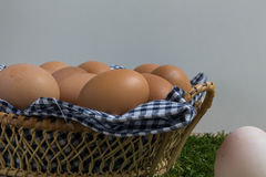 Leadership Concept : White egg is outstanding from the group of Royalty Free Stock Images