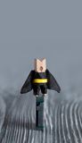 Leadership conceptual image. Clothespin superhero Royalty Free Stock Photo