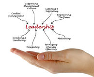 Leadership diagram royalty free stock image