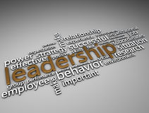 Leadership Gold  3d text Royalty Free Stock Image