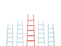 Leadership on Ladder Royalty Free Stock Photography