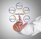 Leadership style Royalty Free Stock Photos