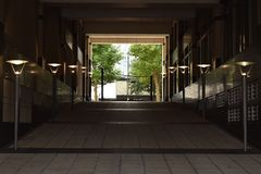 Long dimly lit hallway. Leading to trees Stock Photography
