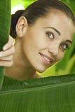 On leaf Stock Photos