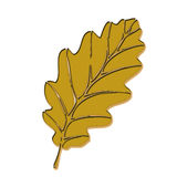 Leaf. Beautiful golden  leaf isolated in white background Royalty Free Stock Photography