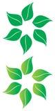 Leaf Stock Photo