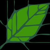 leaf 2 vektor illustrationer