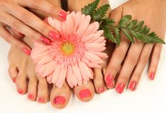Leaf. Beautiful pink manicure and pedicure royalty free stock photos