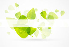 Leaf abstract background Stock Image