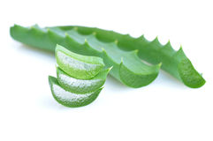 Leaf of aloe Stock Image
