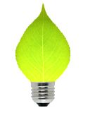 Leaf And Lamp Stock Photography