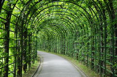 Leaf Arch Path. These are the beautiful leaf arches of the Linderhof palace located in Germany. It leads the visitor from the castle up to the venus grotto Stock Photography