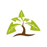 Leaf arrow plant green nature ecology icon. Vector graphic Stock Images