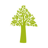 Leaf arrow plant green nature ecology icon. Vector graphic Stock Photos