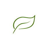 Leaf artistic line. Vector illustration royalty free illustration