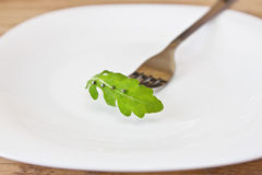 Leaf of arugula on a plate Royalty Free Stock Image