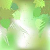 Leaf, autumn - vector background Royalty Free Stock Photos