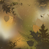 Leaf, autumn - vector background Royalty Free Stock Images