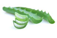 Leaf av aloe Fotografering för Bildbyråer