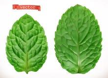 Leaf av minten realistisk symbol för vektor 3d royaltyfri illustrationer