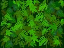 Leaf background Stock Photo