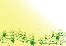 Leaf background. Spring leaf background with space for text. Vector Royalty Free Stock Images