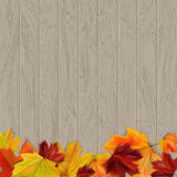 Leaf background. Autumn abstract background with place for text, vector illustration Stock Photos