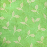 Leaf Background With Light Grunge Stock Photos
