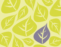 Leaf background with purple standout. Leaf background with muted colors and one leaf that is soft purple Stock Image