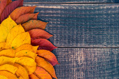 Leaf background on a wooden table Royalty Free Stock Image