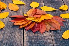 Leaf background on a wooden table Royalty Free Stock Photo