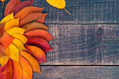Leaf background on a wooden table Royalty Free Stock Photos