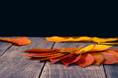 Leaf background on a wooden table Royalty Free Stock Photography