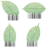 Leaf Barcode vector illustration