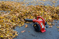 Free Leaf Blower Royalty Free Stock Photos - 27365938