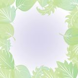 Leaf border. Abstract leaf border, vector illustration Royalty Free Stock Photos