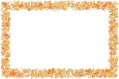 Leaf Border. Autumn Leaf Border / Frame - Seasonal Border royalty free stock photo