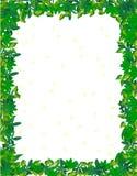 Leaf border Stock Images